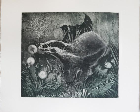 Badger Etching