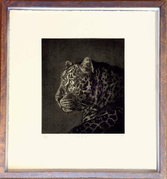 African Leopard Etching