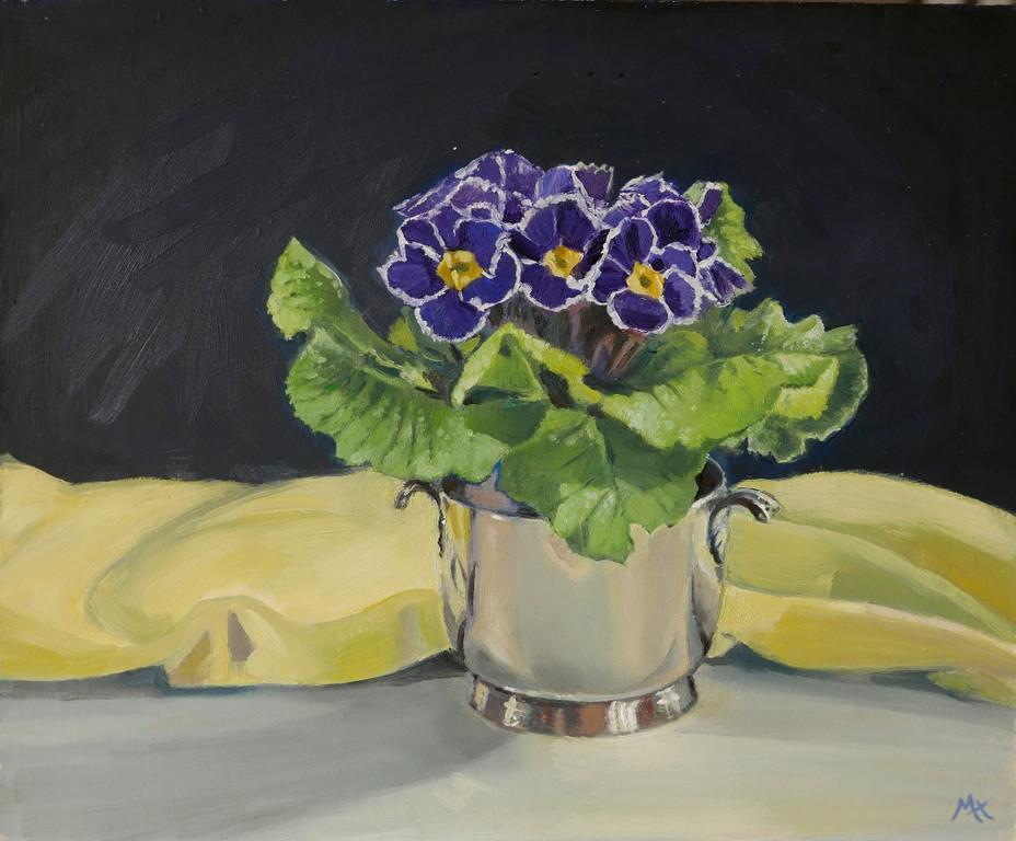 Primrose in purple