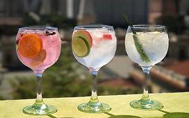 gin tonica2.jpg