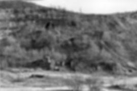 Fischbacherwerk_Ruinen 1960.jpg