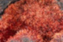 Karminit Louise BB 2,6 mm Stefan Hucko 1