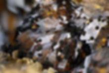Corkit Louise BB 2,8 mm Eckhard Scholl 1