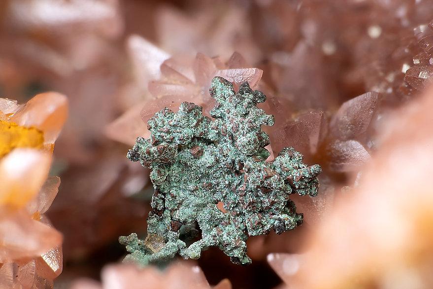 Kupfer Grüner Löwe BB 5,2 mm Andreas Ger