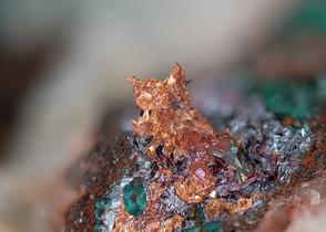 Kupfer Schmiedeberg BB 2,5 mm Overkott 1