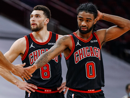 The Chicago Bulls Are Back (?)