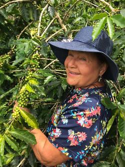 Doña Irma Tinoco