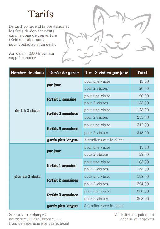 tarifs 2019 pour Wix et Facebook.JPG