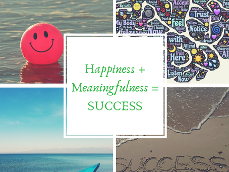 Happiness + Meaningfulness = SUCCESS!