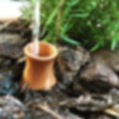 Olla pot watering