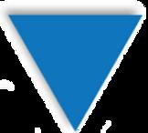 logo triangle transparent.png
