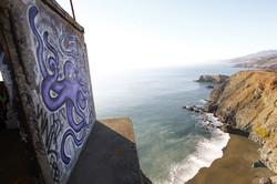 Cliffside - Northern California
