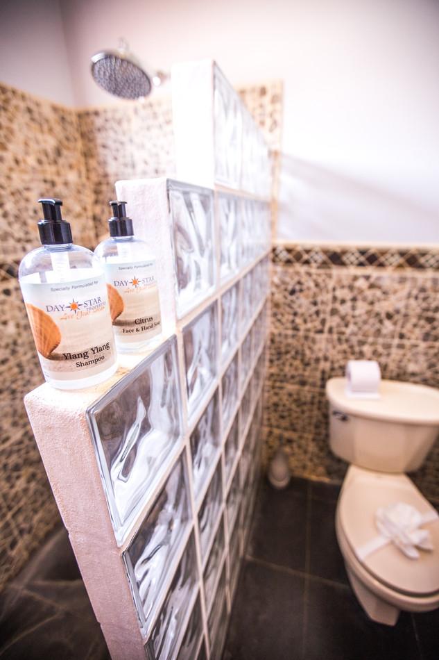DayStar Soap