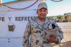 Mean Soldier - Loreto, Baja Mexico