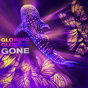 glowing one, rt, dubai, underwater, charity