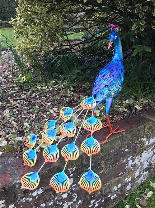 Sitting Metal Peacock 55cm