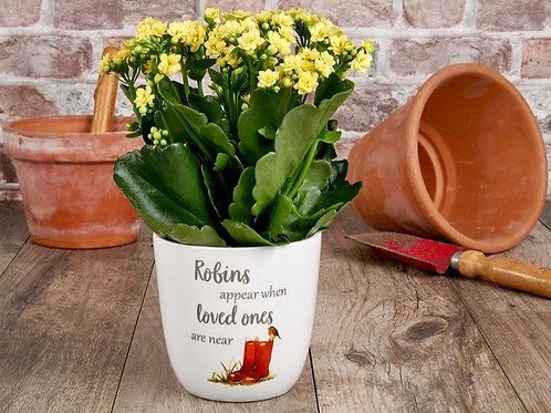 Robin plant pot