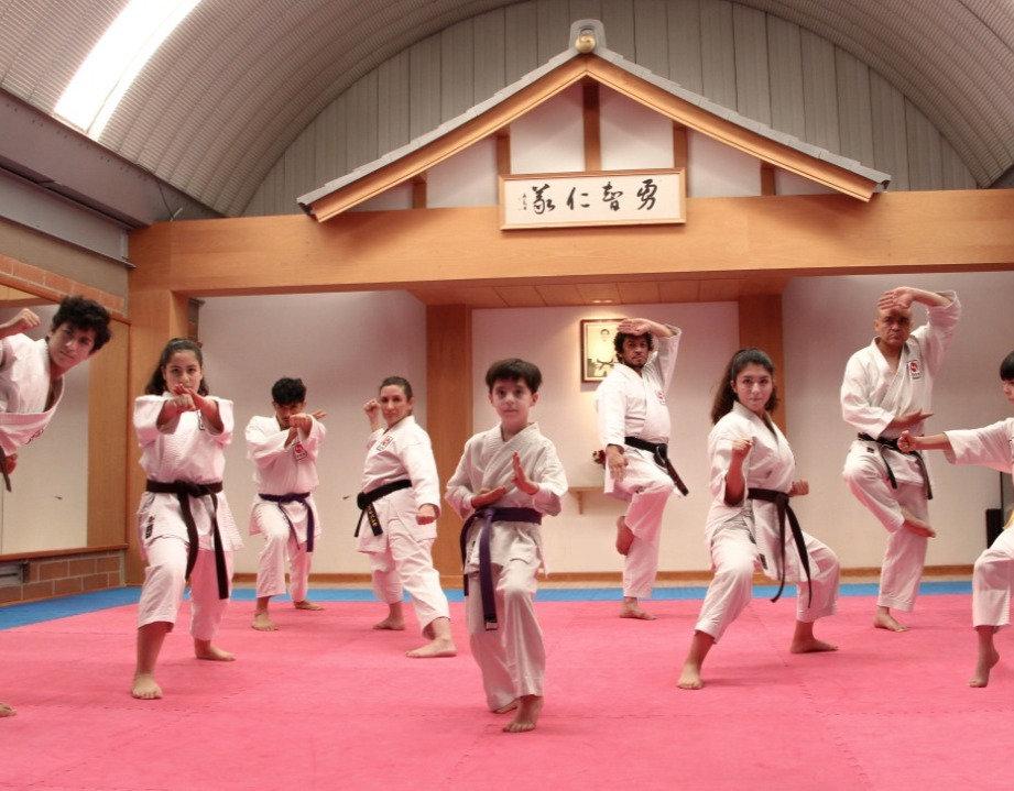 Karate Do para niños