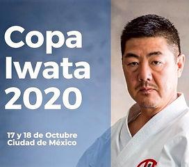 Copa%252520Iwata%2525202020_edited_edite