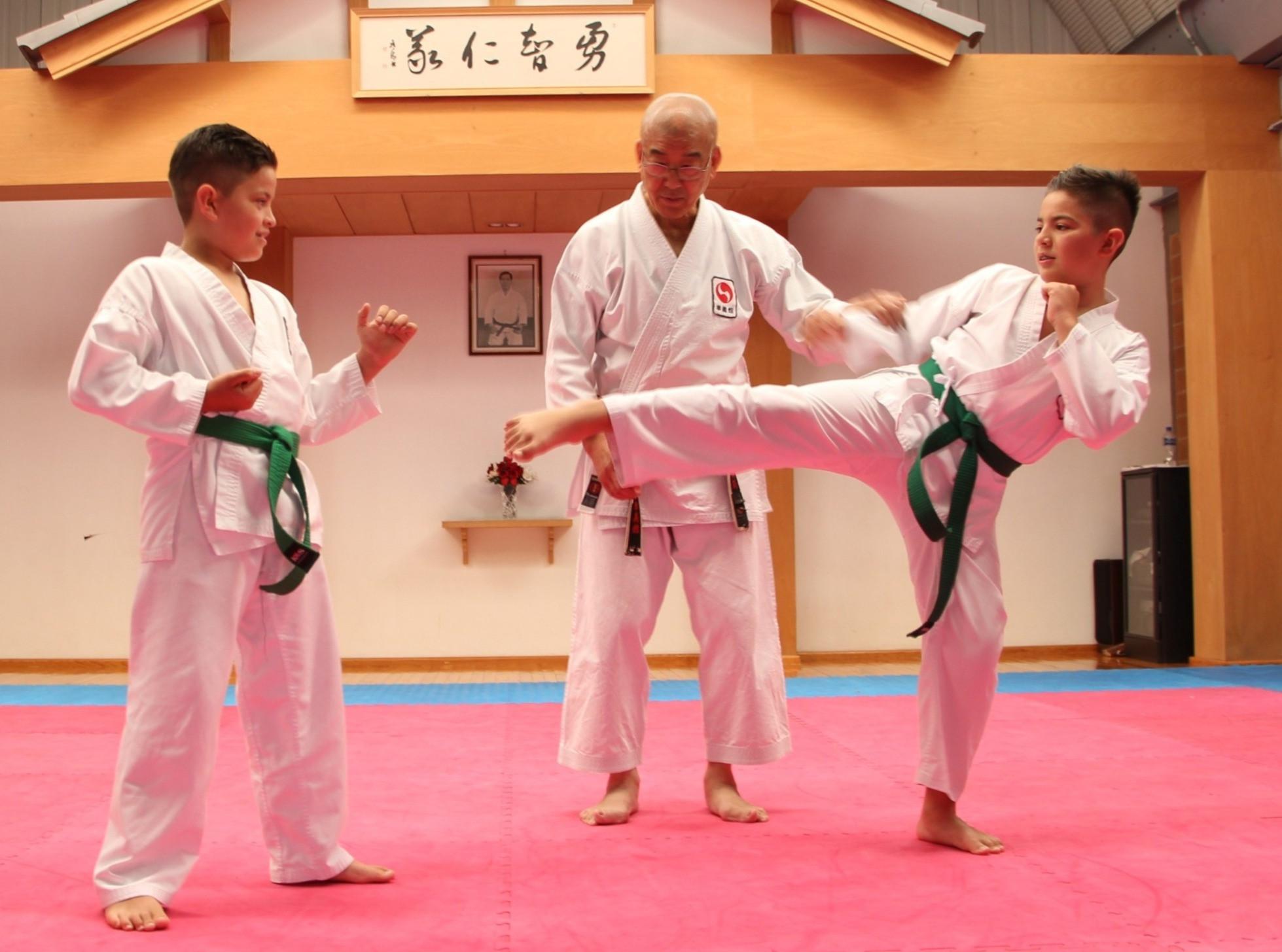 Karate Do nivel básico