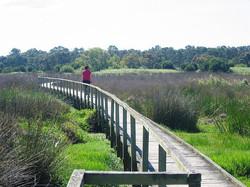 Sale Common Reserve Boardwalk.jpg