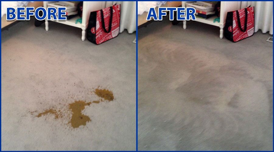 Residential Carpet Stain Removal