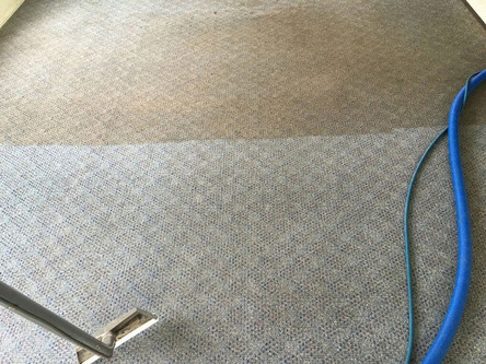 Residential Carpet Cleaning Before And After