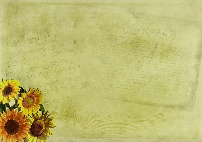 flowers-2799994_1920.jpg