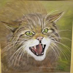 toothyWildcat.jpg