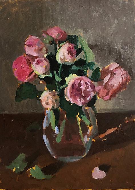 English rose, on panel