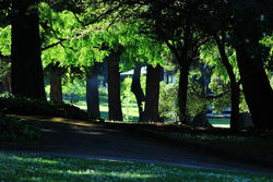 Park in Santa Cruz