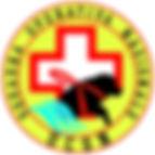 logo squadra operativa nazionale UCSN
