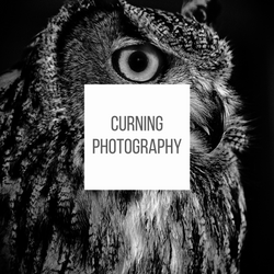Curning Photography
