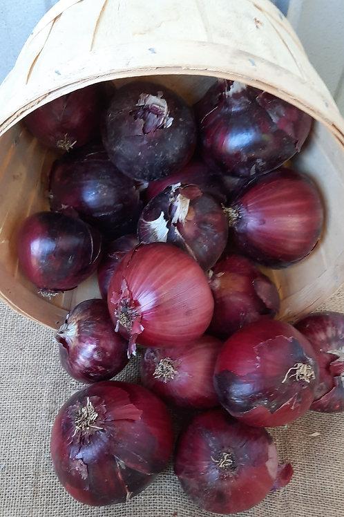 Red Storage Onions - Monastrell