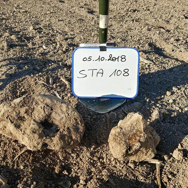 SP-météorites STA108.jpg
