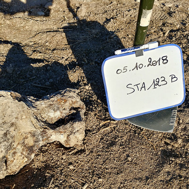 STA 123 pierre antonin st aubin.jpg