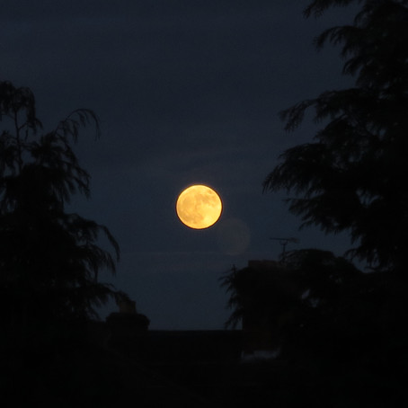 Full Moon: On Becoming