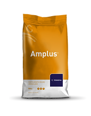 amplus.png