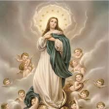 Oração à Nossa Senhora da Imaculada Conceição