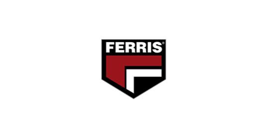 FERRIS_edited.jpg
