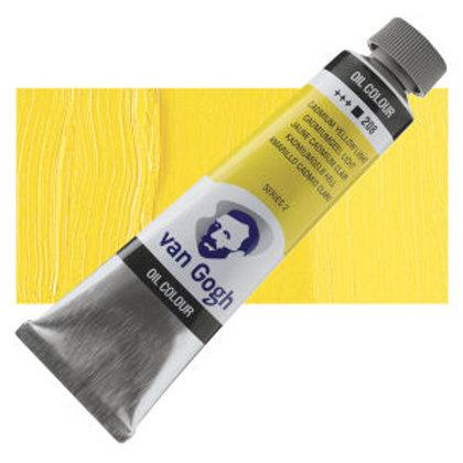 208 Cadmium Yellow Light