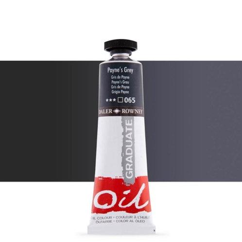 065 Paynes Grey