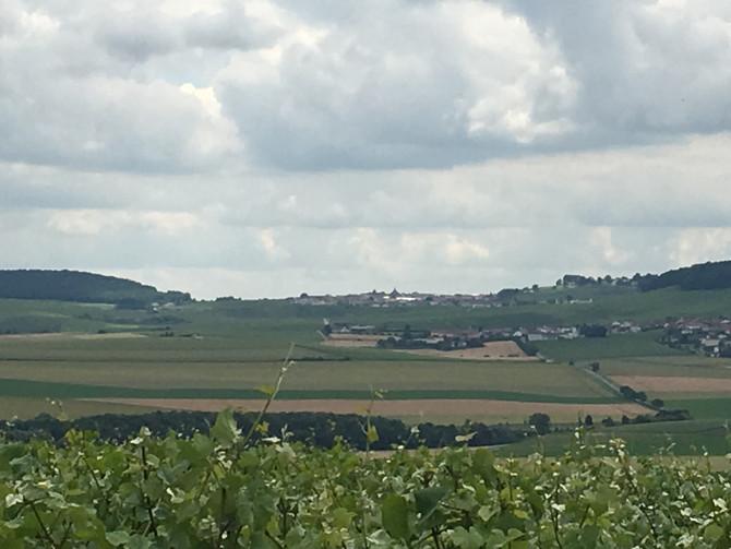 L'Escapade Pétillante et Gourmande des Côteaux Sud d'Epernay