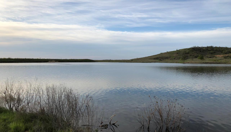 Lake - Jackson Tank.jpeg