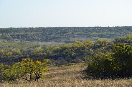Landscape Overlook Tecumseh.jpeg