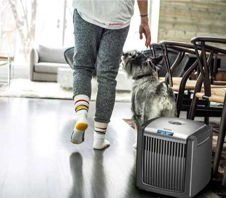 Person with dog walking past their Beurer Air Cleaner and Air Humidifier. Perfect for a cooling effect in your room, while purifying your house.
