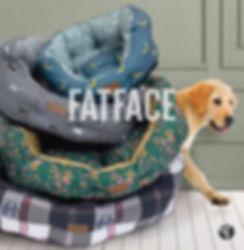 fatface brochure cover ss20.jpg
