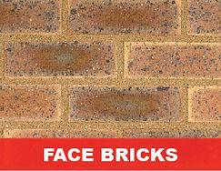 Face Bricks-01.jpg