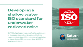 Developing a new standard for underwater noise