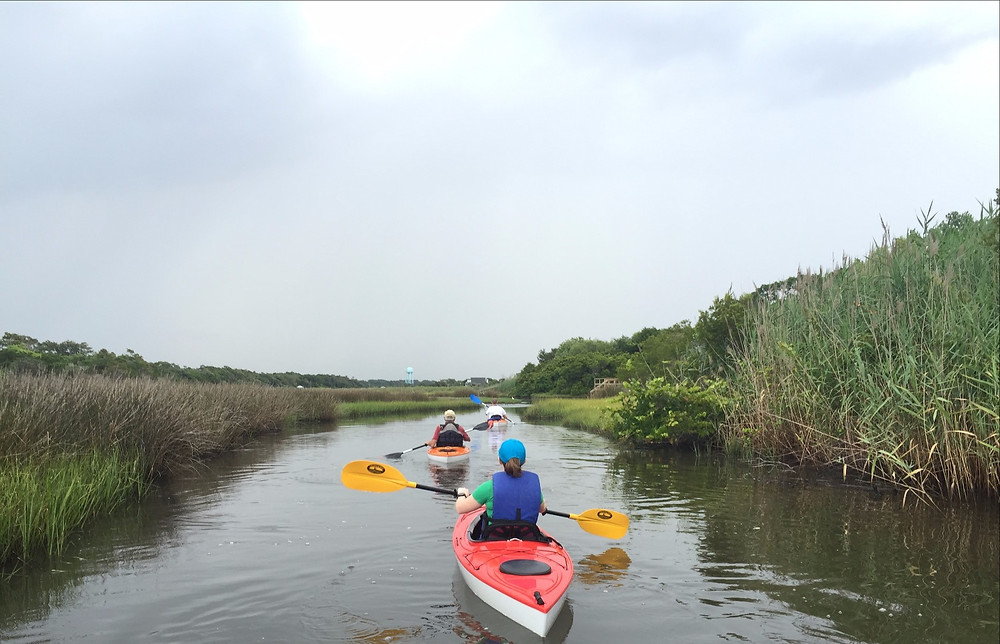 Oak Island Kayak Tours